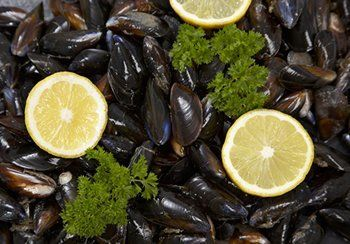 how to clean mussels fresh from the sea