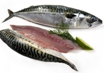 Frozen prime fillets for Is fish considered meat