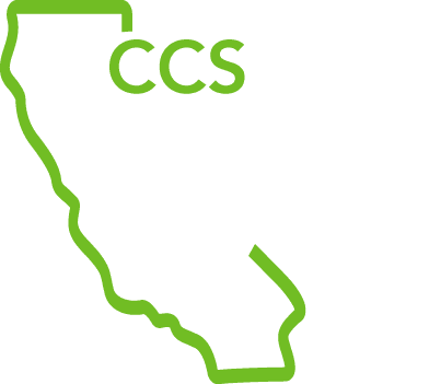 California Creative Surfaces | Landscape Construction