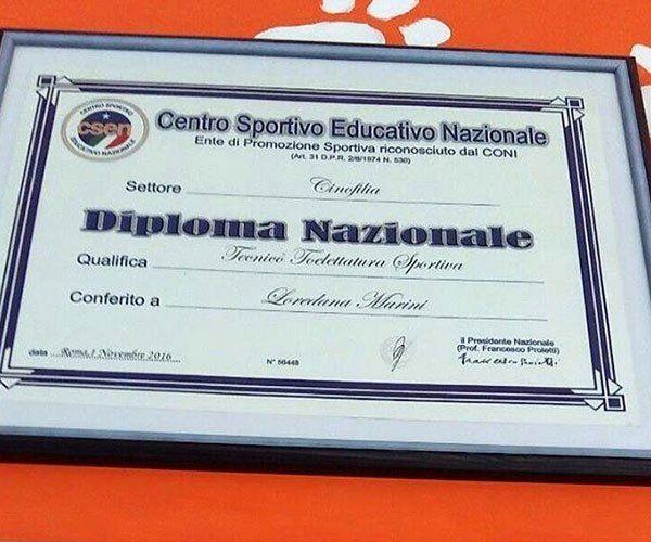 Diploma di tecnico di toelettatura sportiva