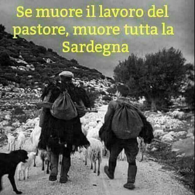 due pastori sardi con il gregge di pecore