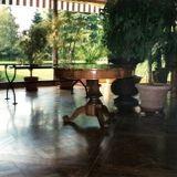 decorazione legno pavimenti