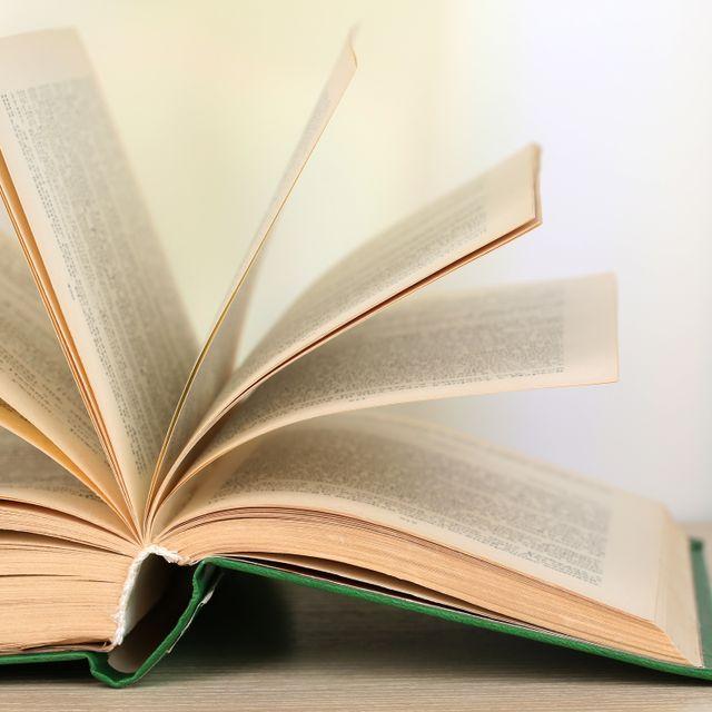 law book opened scholles & scholles attorneys