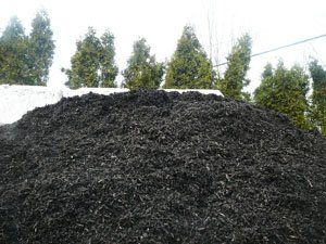 Firewood And Mulch Services Hudson Nh Tip Top Tree