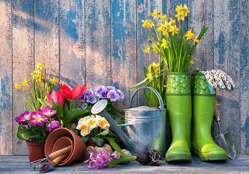 composizione con vasi di fiori e stivali da giardinaggio