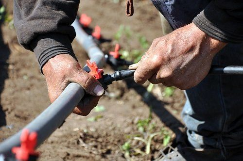 inquadratura di mani che sistemano una pompa per irrigazione dei campi