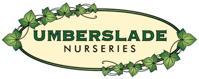 Umberslade Garden Centre company logo