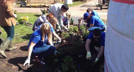 plantation volunteer work