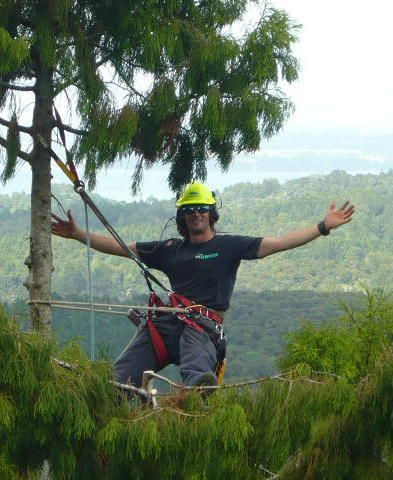 A tree removal expert in Franklin and Arborist loving his job