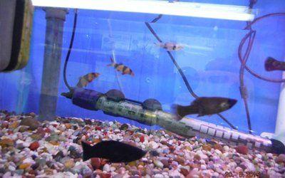 Second hand aquarium