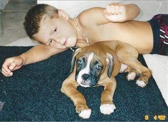 Boxer pup year 2002
