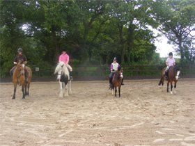 Livery and schooling - Pembrey  - Pembrey Equestrian Centre - Horse Riding