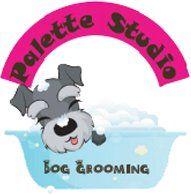 Palette Studio logo