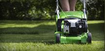 cura di giardini, cura del verde, taglio prati