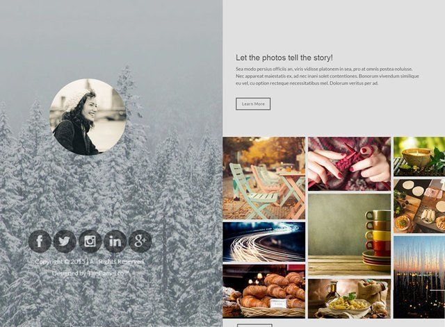 One Page Theme 1 Website Design Themes by Search Marketing Specialists