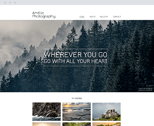 Amalie Photography Website Design Themes by Search Marketing Specialists