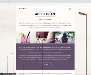 Bold Website Design Themes by Search Marketing Specialists