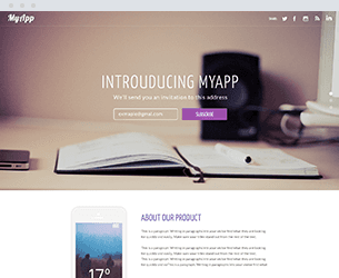 Intro Website Design Themes by Search Marketing Specialists