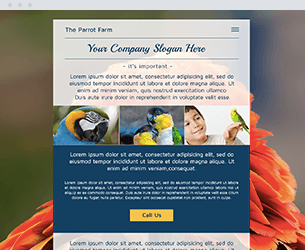 Parrot Farm Website Design Themes by Search Marketing Specialists