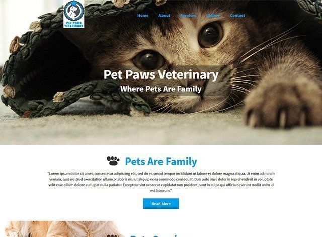 Pet Paws Website Design Themes by Search Marketing Specialists