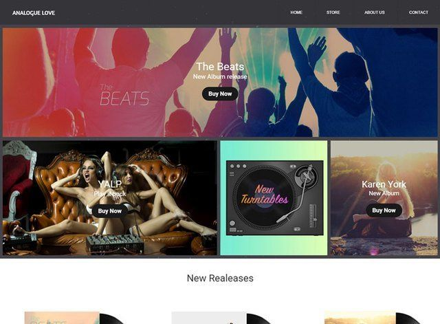 Record Store Website Design Themes by Search Marketing Specialists