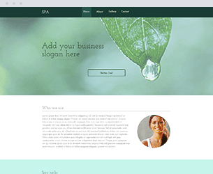 Spa Website Design Themes by Search Marketing Specialists