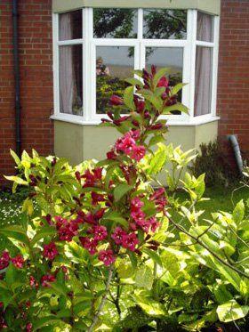 Care homes - Knott End-on-Sea, Poulton-le-Fylde - St Albans Nursing Home - Wndow