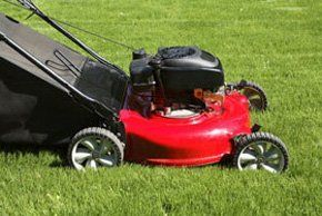 Gardening equipment - Loddon, Norwich - Loddon Garden & Seed Centre - Lawnmower