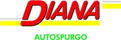 Diana Autospurgo logo