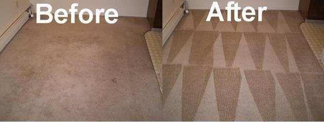 Carpet Cleaning Midland Amp Odessa Tx Fresh N Clean