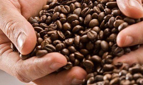 chicchi di caffè mantova