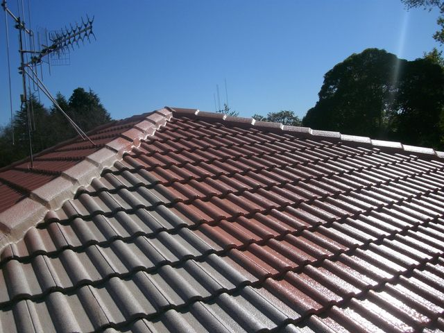roof repair installation
