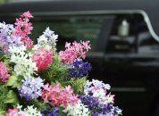 auto funebre, marcia funebre, servizi funebri