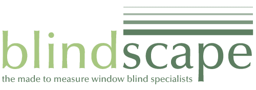 blindscape logo