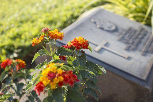 particolare di una lapide a terra con accanto dei fiori