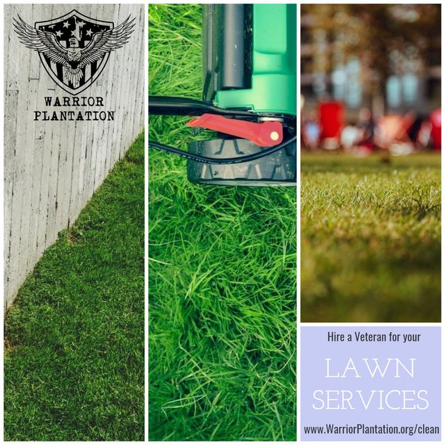 Lawn Care Services Now Available