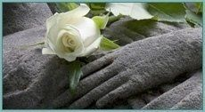 rosa bianca su sarcofago di pietra
