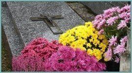 lapide con fiori