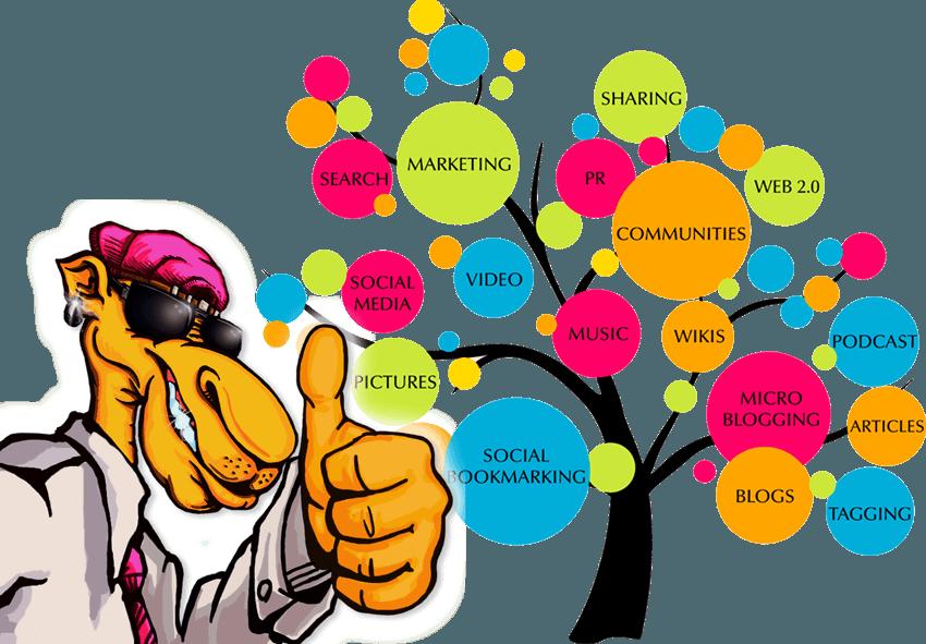 Search Engine Optimizaton