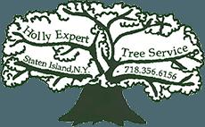 Tree Company | Staten Island, NY | Holly Expert Tree Care