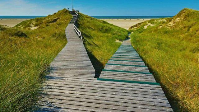passerelle in legno su una spiaggia