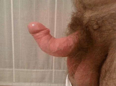 cazzo penies grande shemale Dicks pics