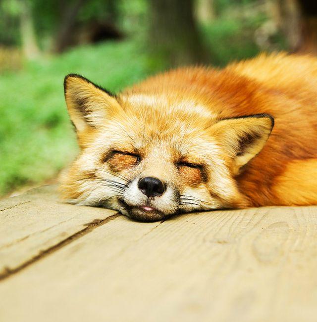 อ่างน้ำวน อ่างน้ำวนจากุซซี่เคลื่อนที่ ช่วยแก้ปัญหาการนอนหลับ ช่วยให้หลับได้สบาย อ่างน้ำสปา
