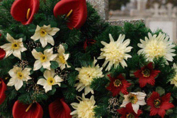 dei fiori bianchi e rossi e un pino