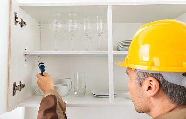 Worker inspecting kitchen