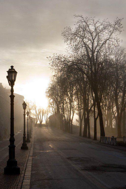strada deserta con nebbia