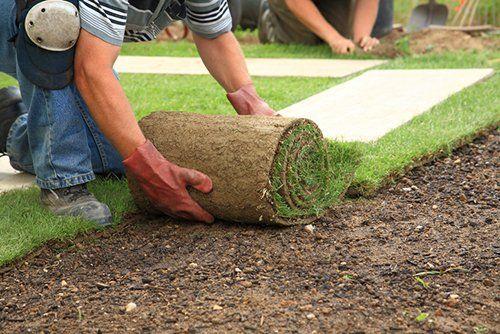 Lawn Service Apex, NC