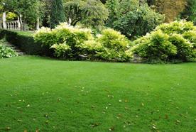 Beautiful Garden Landscapes