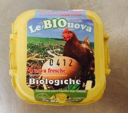 Uova confezionate in provincia di Fermo