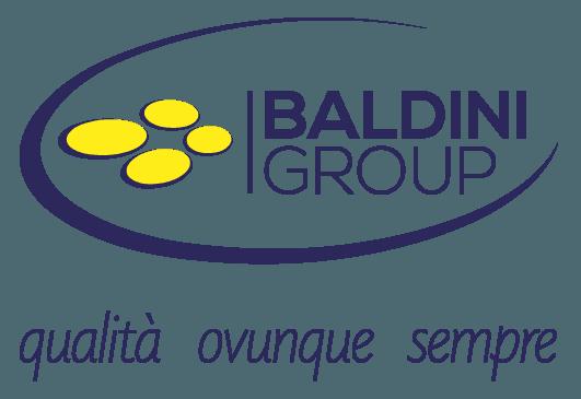 Baldini group, ricambi auto, ricambistica